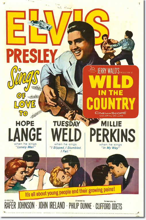 Wild In The Country - Movie Poster