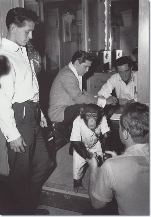 Elvis' pet Chimp, Scatter with Elvis on the set of It Happened At The World's Fair