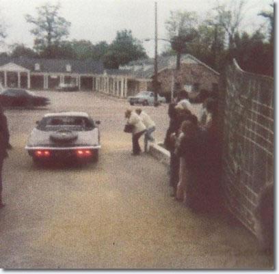 Leaving Graceland