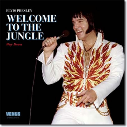 Welcome To The Jungle - Way Down CD