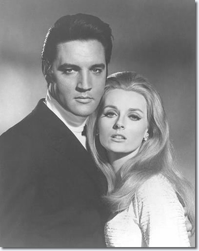 Elvis Presley and Celeste Yarnall : Live A Little Love A Little : MGM 1968, publicity photo.