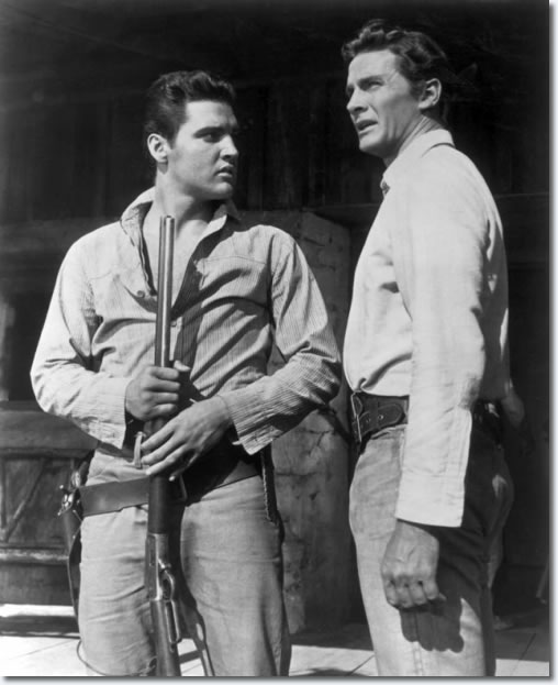 Steve Forrest played Clint Burton, half brother to Elvis' character Pacer in Flaming Star.